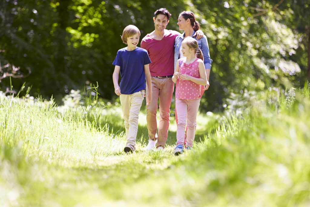 42271078 – family walking through summer countryside
